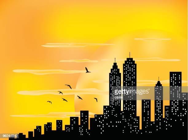 City Skyline and ahining sun with birds silhouette illustration