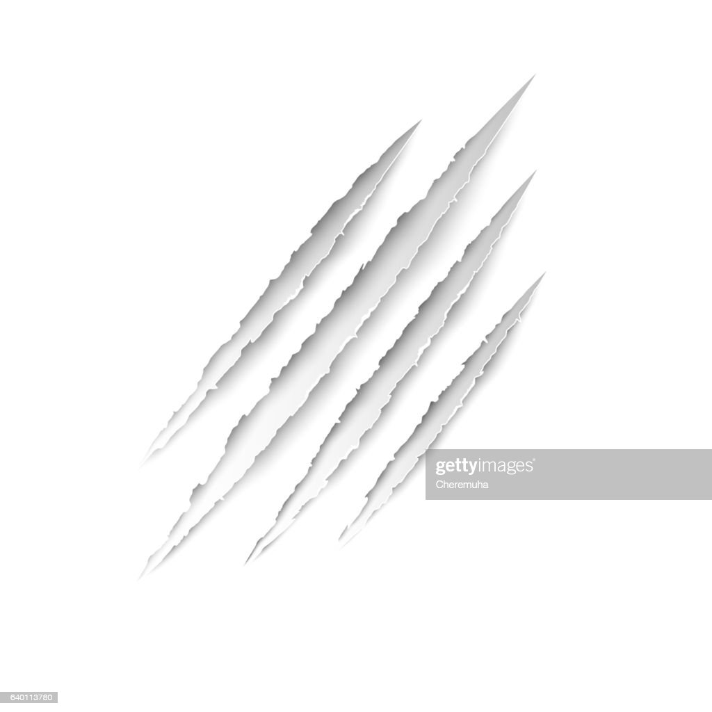 Claws animal scratches on white paper background. Vector scratch set.