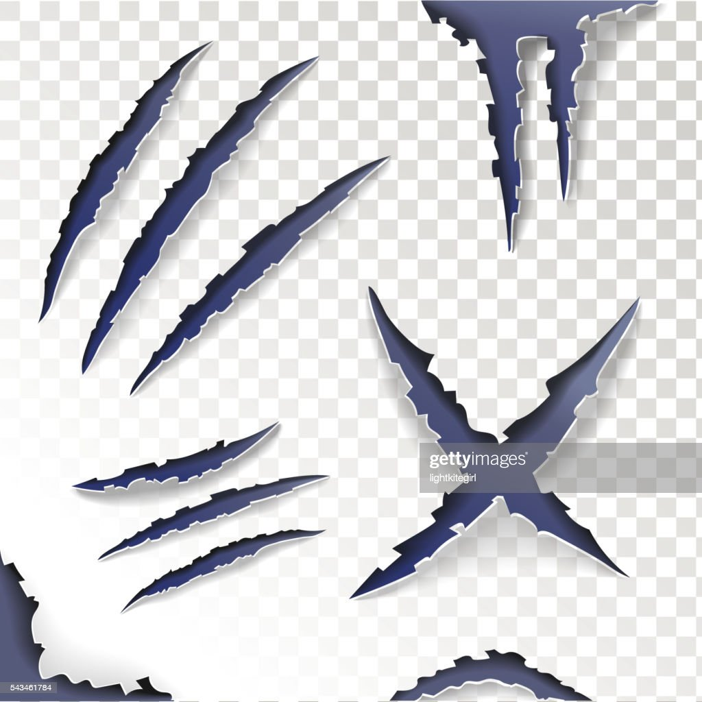 Claws Scratches on a transparent background. Set. Vector
