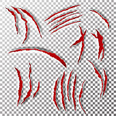 Claws Scratches Vector. Claw Scratch Mark. Bear Or Tiger Paw Claw Scratch Bloody. Shredded Paper