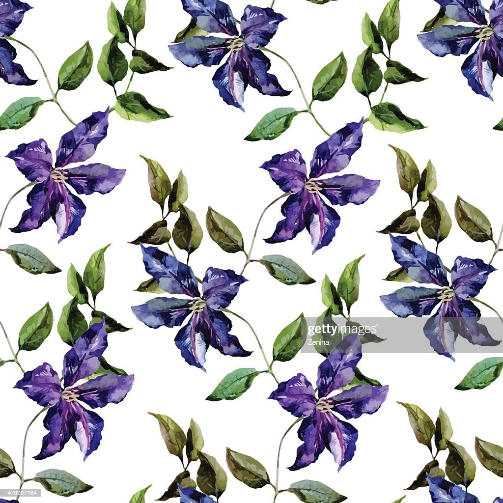 Clematis flower pattern