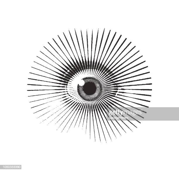 close up of eye with frightened expression - fear stock illustrations