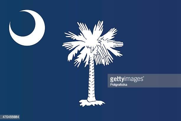 close-up of flag of south carolina  - south carolina stock illustrations