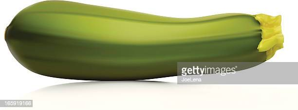 closeup of long green zucchini with white background - marrom stock illustrations