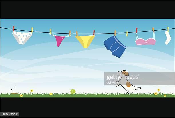 ilustraciones, imágenes clip art, dibujos animados e iconos de stock de cuerda de tender la ropa - tanga