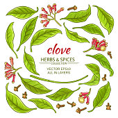 clove elements set