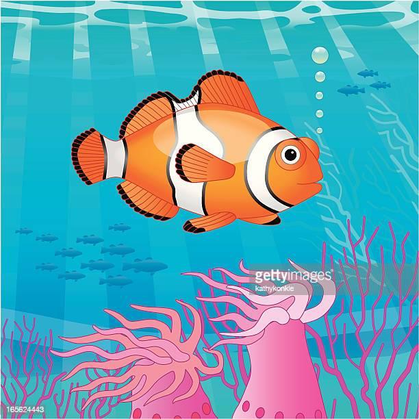 clown fish scene - ocean floor stock illustrations