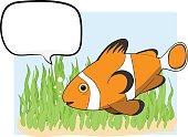 Clownfish With Text