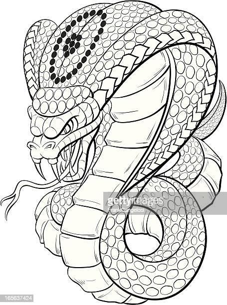 ilustraciones, imágenes clip art, dibujos animados e iconos de stock de cobra blanco y negro - cobra