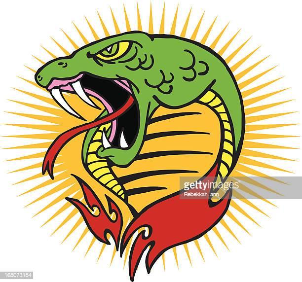 ilustraciones, imágenes clip art, dibujos animados e iconos de stock de cobra de - cobra