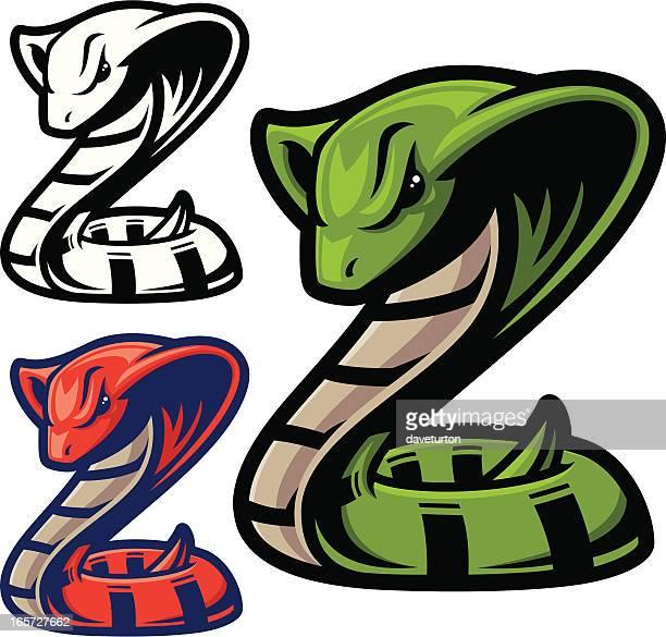 ilustraciones, imágenes clip art, dibujos animados e iconos de stock de cobra serpiente - cobra