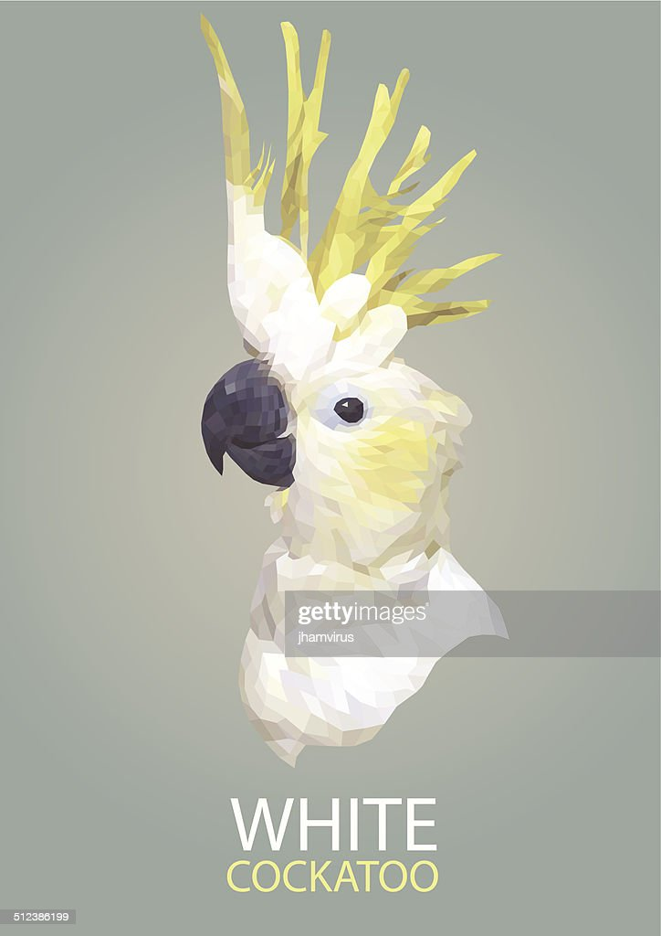 Cockatoo vector polygon