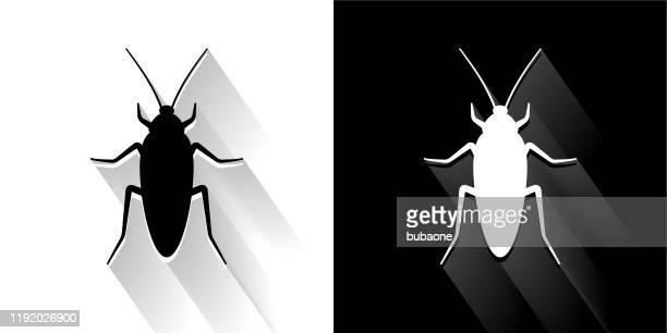 ilustraciones, imágenes clip art, dibujos animados e iconos de stock de icono de cucaracha en blanco y negro con sombra larga - cucarachas