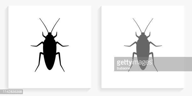 ilustraciones, imágenes clip art, dibujos animados e iconos de stock de cockroach icono cuadrado en blanco y negro - cucarachas