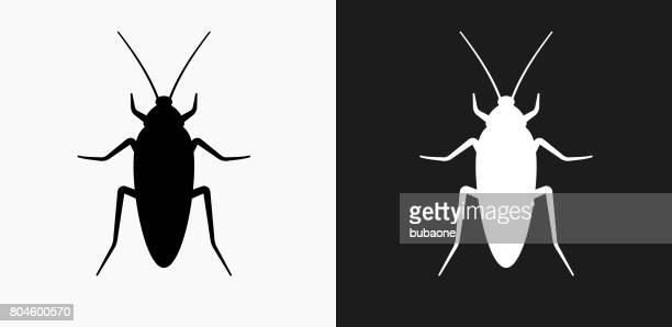 ilustraciones, imágenes clip art, dibujos animados e iconos de stock de cucaracha icono en blanco y negro vector fondos - cucarachas