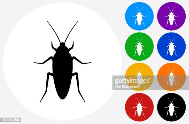 cockroach icon on flat color circle buttons - pests stock illustrations