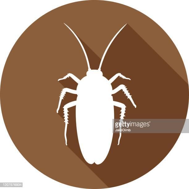 ilustraciones, imágenes clip art, dibujos animados e iconos de stock de silueta de icono de cucaracha - cucarachas