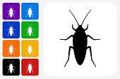 Cockroach Icon Square Button Set