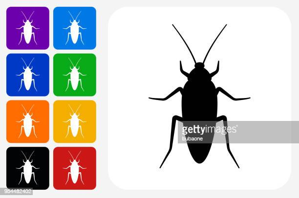 cockroach icon square button set - pests stock illustrations