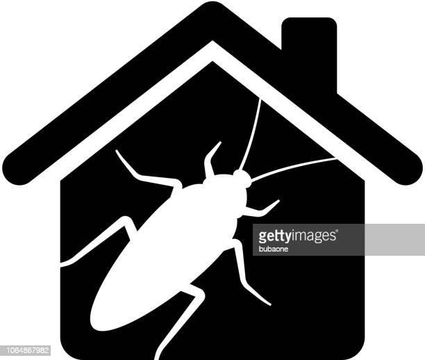 ilustraciones, imágenes clip art, dibujos animados e iconos de stock de plagas de cucarachas en casa icono con larga sombra - cucarachas