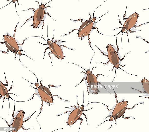 Cockroaches - Seamless Pattern