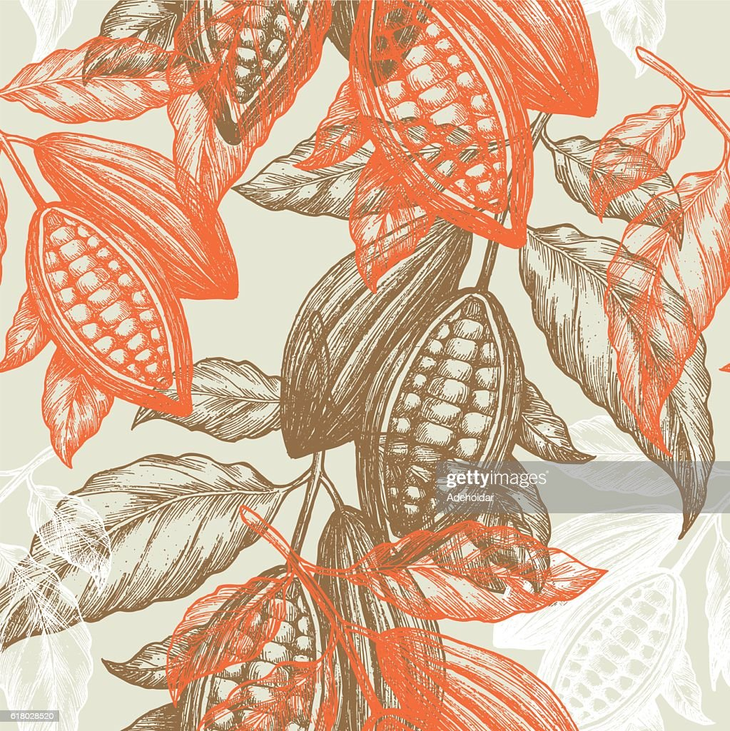 Cocoa beans seamless pattern. Cocoa tree illustration. Chocolate cocoa beans.