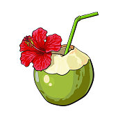 Coconut cocktail, drink decorated with hibiscus flower, summer vacation attribute