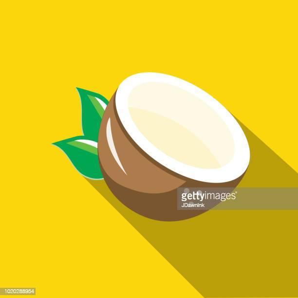 ilustrações, clipart, desenhos animados e ícones de coco meia fruta design plano ícone temático com sombra - cocos plant