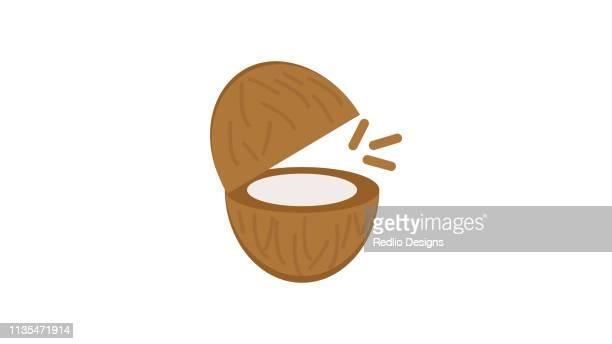 coconut icon vector - husk stock illustrations, clip art, cartoons, & icons