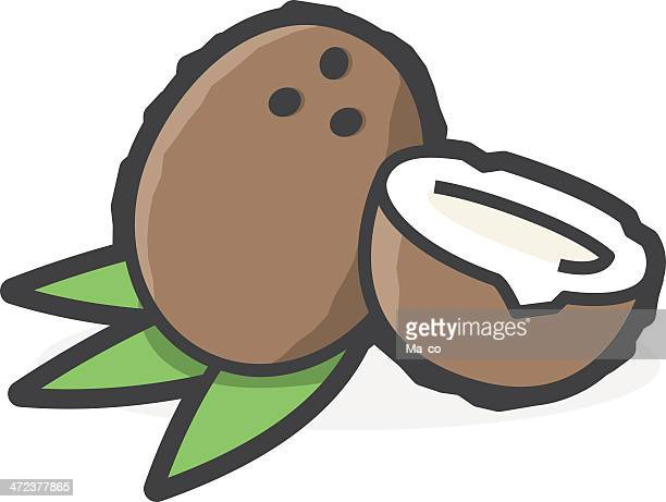 coconut on a white background - cocos island costa rica stock illustrations, clip art, cartoons, & icons