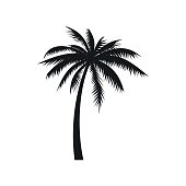 Coconut palm tree icon, simple style