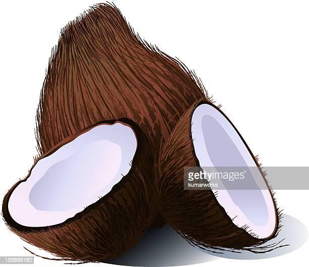 coconut - husk stock illustrations, clip art, cartoons, & icons