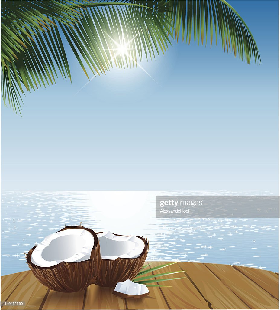 Coconuts on Table Ocean and Palmleaves : stock illustration