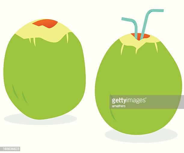 coconuts - husk stock illustrations, clip art, cartoons, & icons