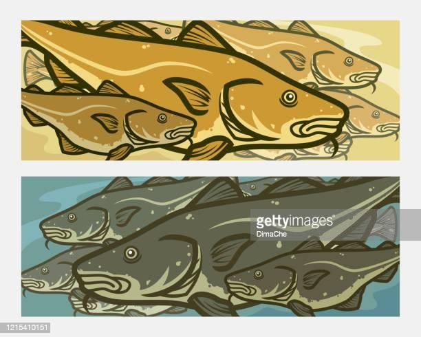 stockillustraties, clipart, cartoons en iconen met kabeljauw. de achtergrond van de beeldverhaal atlantische kabeljauw vist vector - frische