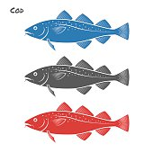 Cod fish vector illustration on white background