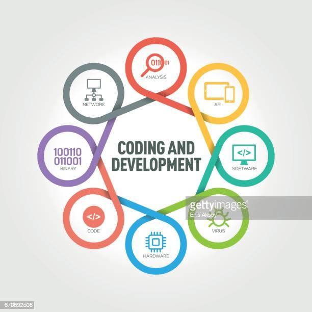 Coding and Development infographic with 8 steps, parts, options