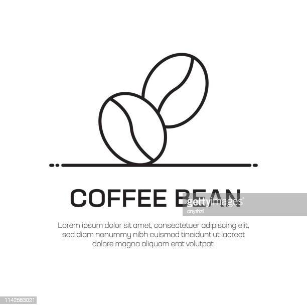 coffee bean vector line icon - simple thin line icon, premium quality design element - caffeine stock illustrations
