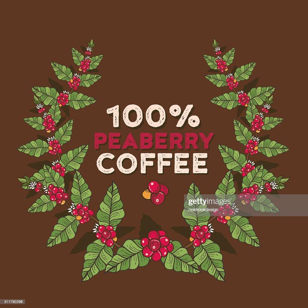 Coffee flowers and berries