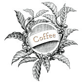 Coffee frame hand drawing vintage engraving illustration