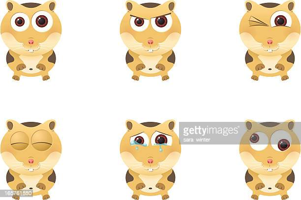 Collection of a big-eyed hamster with different facial expressions