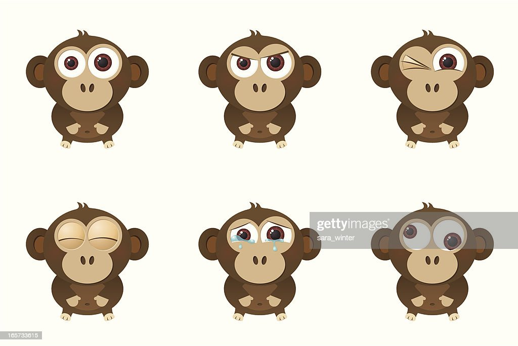 Collection of a big-eyed monkey with different facial expressions