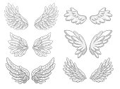 Collection of angel wings with grey and white feathers, wide spread. Contour drawing in modern line style with volume. Vector illustration isolated on white.