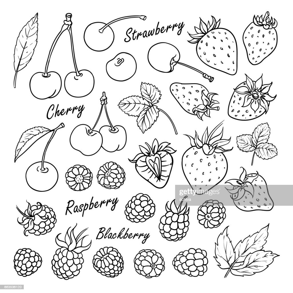 Collection of berries: cherry, strawberry, raspberry, blackberry isolated on white