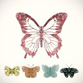 Collection of butterflies with lace patterns