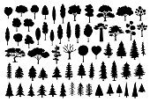 collection of different park, forest, conifer cartoon trees silhouettes in black color set