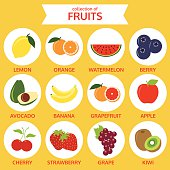 collection of fruits icon, food vector illustration