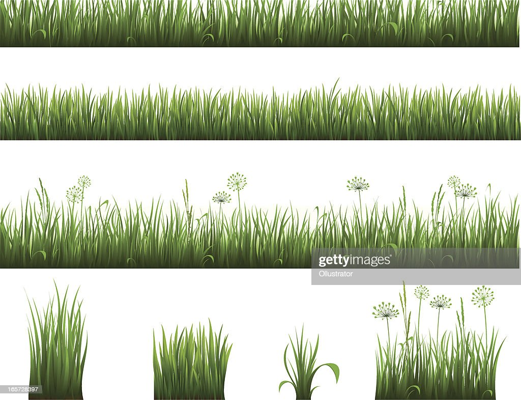 Collection of grass