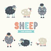 Collection of hand drawn cartoon sheep. Animal characters