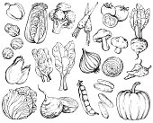 Collection of hand-drawn vegetables, black and white.